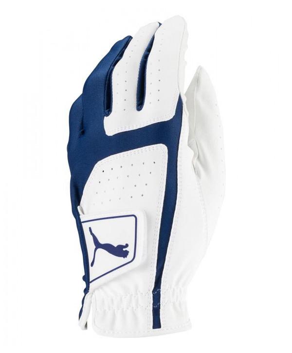 Pánská golfová rukavice Puma Form Stripe